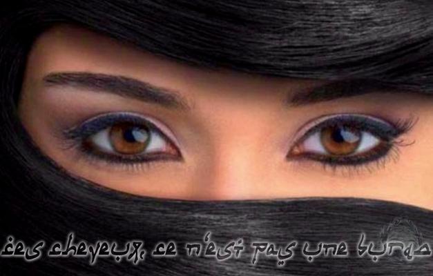 Ceci n'est pas une burqa2